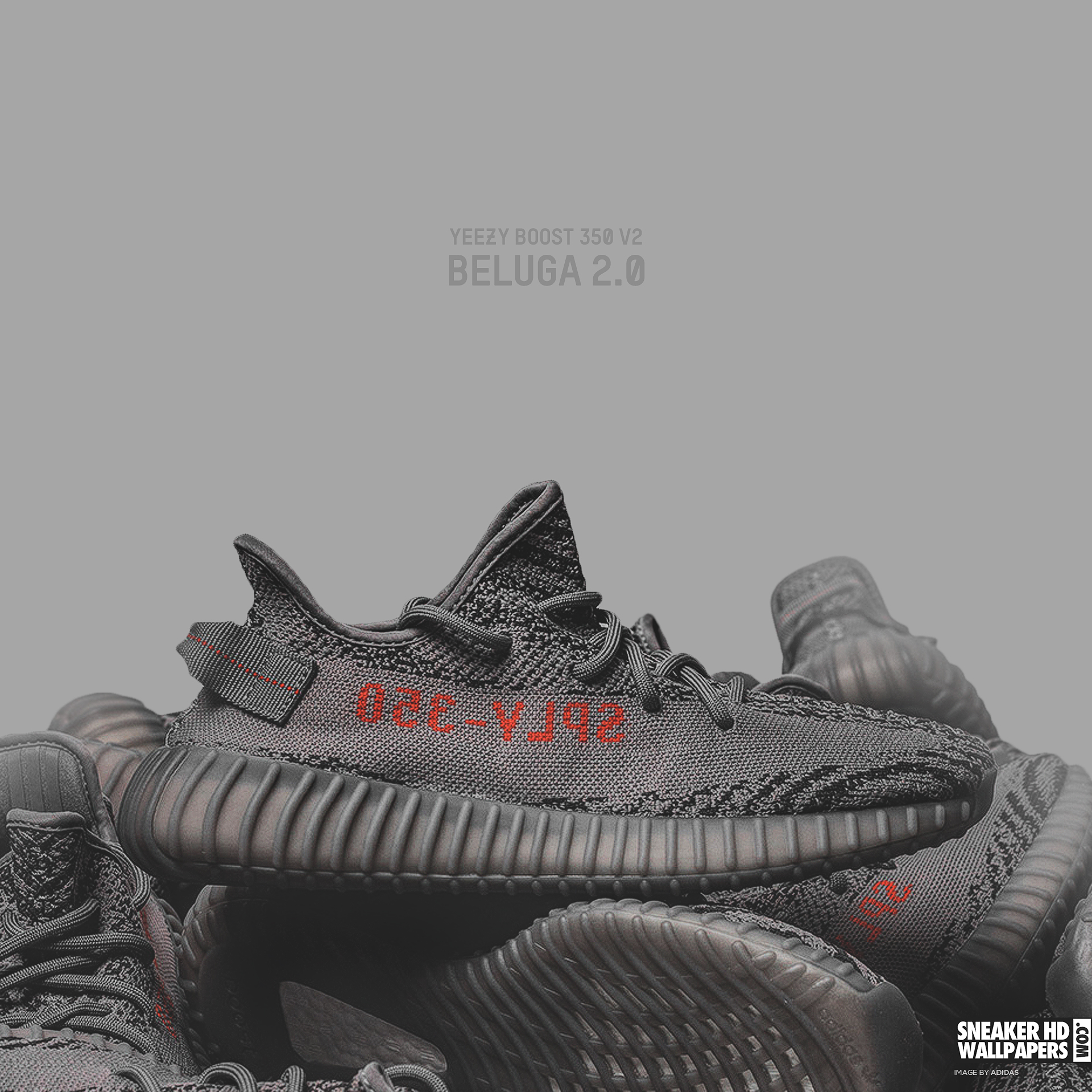 adidas Originals YEEZY BOOST 350 V2 Beluga 2.0 | Dark Сompany